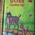 Walt Disney's Wonderful World of Reading Bambi Grows Up Hardback Book   #600292