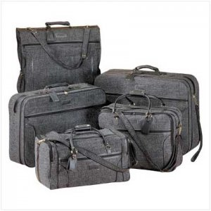 Luxurious Luggage Set   ~ free shipping ~