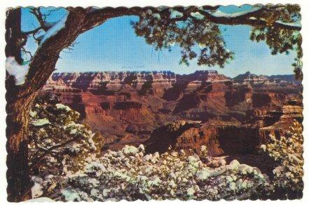 SPLENDID VIEW GRAND CANYON NATIONAL PARK 1982 POSTCARD