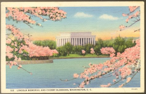LOVELY VIEW LINCOLN MEMORIAL CHERRY BLOSSOMS WASHINGTON D.C. POSTCARD