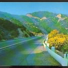 ca 1950/1960 ROADWAY TO THE SAN BERNADINO MOUNTAINS 725