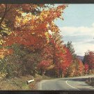 GLISTENING GOLD FOLIAGE LINING THE HIGHWAY THETFORD VERMONT 858