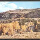 SPLENDID AUTUMN VIEW ASPEN GROVE CONEJOS RIVER CONEJOS VALLEY COLORADO 888