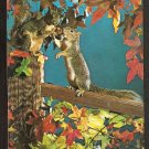 2 PLAYFUL SQUIRRELS ON A FENCE POST AMID AUTUMN FOLIAGE 897