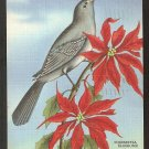 1940 LINEN A TUNEFUL MOCKING BIRD PERCHED ON A POINSETTIA 904
