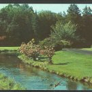 Lovely Summer View Forest Brook Park Springfield MA Postcard 1026
