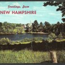 Greetings From New Hampshire Lake Meadow Church and Spire Chrome Postcard 60