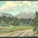 Spanish Peaks of Southern Colorado Forest and Dirt Road Linen Postcard 1093