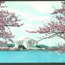 Thomas Jefferson Memorial Washington DC Cherry Blossoms in Bloom Chrome Postcard 1102