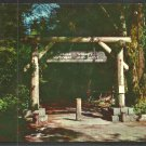 Gateway To Muir Woods National Monument Mill Valley California CA Chrome Postcard 176