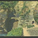 Entrance Tunnel Sentry Bridge Watkins Glen New York State Park Linen Postcard 1131