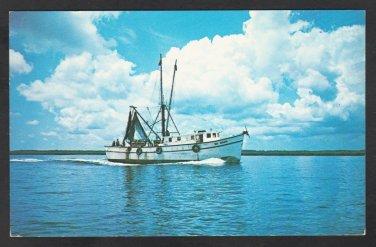 Shrimp Boat Big Mama Returns Home From the Sea Chrome Postcard 305
