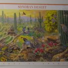 Full Sheet Sonoran Desert stamps