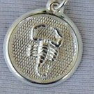Scorpio round pendant
