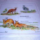 Kangaroos of Australia unused hanky by Neil great for kids or crafts 1201vf