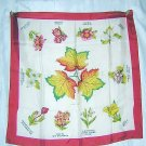 Provincial flowers of Canada souvenir scarf vintage acetate Maple leaf 1262vf