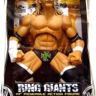 "WWE Jakks Pacific Wrestling RING GIANTS Series 9 DX "" The Game "" Triple H 14 Inch Action figure NEW"