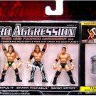 WWE Jakks Micro Aggression Series 2, Triple H, Shawn Michaels & Randy Orton Action Figures