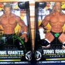 WWE Jakks Pacific RING GIANTS Series 9 DX TRIPLE H & DX Shawn Michaels HBK 14 Inch Action figures