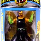 WWE Jakks Pacific Wrestling Classic Superstars Series 25 LJN Jeff Hardy Figure New