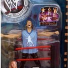 WWF WWE Jakks Pacific Wrestling  Fatal 4-Way Y2J Chris Jericho Action Figure with Ring Accessory New