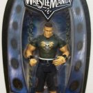 WWE Jakks Pacific Road to Wrestlemania XXII 22 Series 1 Exclusive John Cena Action Figure New