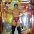 WWE Jakks Pacific Survivor Series A Fall from Grace Randy Orton Action Figure Team Bichoff New