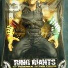 WWE Jakks Pacific Ring Giants Series 10 JEFF HARDY 14 Inch Action figure New