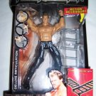 WWE Jakks Pacific Deluxe Aggression Series 15 Y2J Chris Jericho Action Figure with Ladder NEW