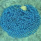 HUGE LOT 72 TURQUOISE MARDI GRAS BEADS NEW PARTY FAVORS