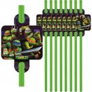 Teenage Mutant Ninja Turtles Straws Green 16 pc Favors Party Supplies TMNT
