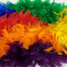 """Rainbow Section Chandelle Feather Boa 6ft 72"""" Masquerade Costume Dress Up 120 GM"""