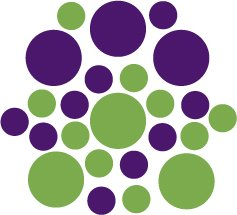 Set of 26 - LIME / PURPLE CIRCLES Vinyl Wall Graphic Decals Stickers shapes polka dots