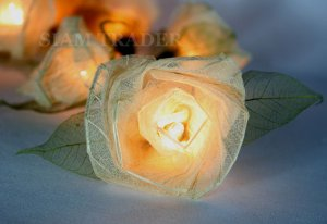 35 Bulb White Rose Flower Party / Christmas String Lights