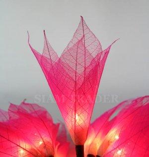 PINK REAL LEAF FLOWER PARTY / CHRISTMAS STRING LIGHTS
