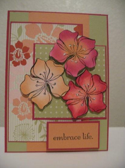Embrace Life - Qty. 1
