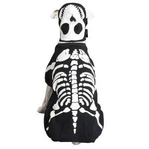 SMALL Glowing Boney Dog Halloween Costume Pet Bones Skeleton Spooky Glow in the Dark