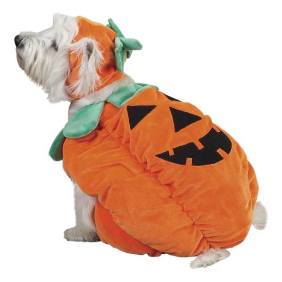 X-LARGE Pumpkin Pooch Costume jack-o-lantern Dog Halloween