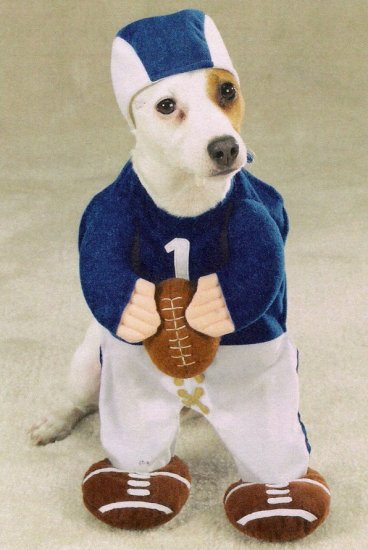 LARGE Football Fever Pet Halloween Costume Dog