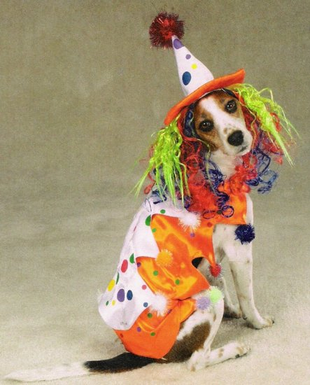 LARGE Class Clown Pet Halloween Dog Costume