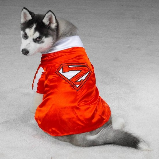 MEDIUM Mighty Mutt Pet Halloween Dog Costume Superman