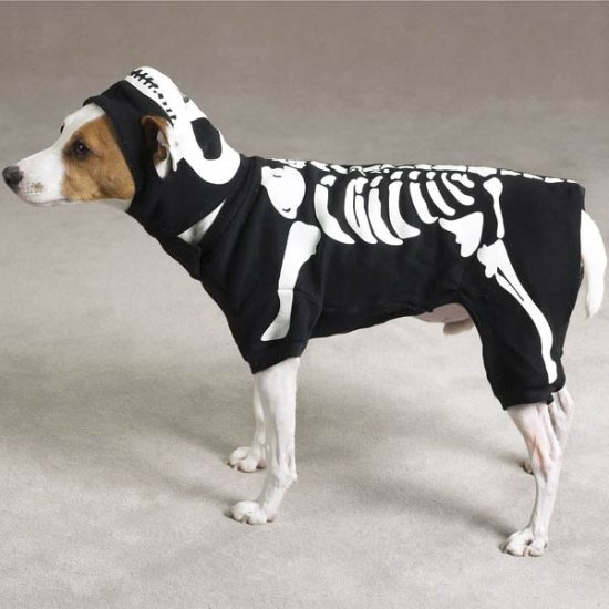 X-SMALL Glowing Boney Dog Halloween Costume Pet Bones Skeleton Spooky Glow in the Dark