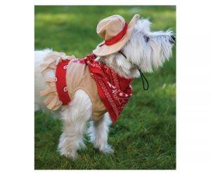 X-LARGE Cutesy Cowgirl Halloween Dog Costume