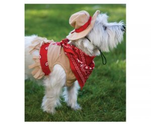 SMALL Cutesy Cowgirl Halloween Dog Costume