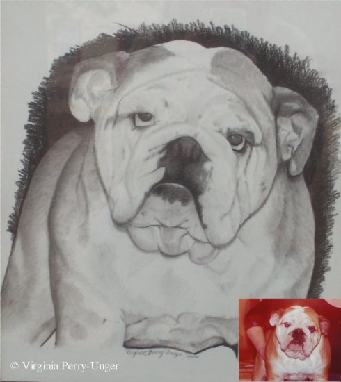 Custom Portrait of Your Pet by Virginia Perry-Unger