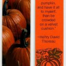 Pumpkin Photography Bookmark