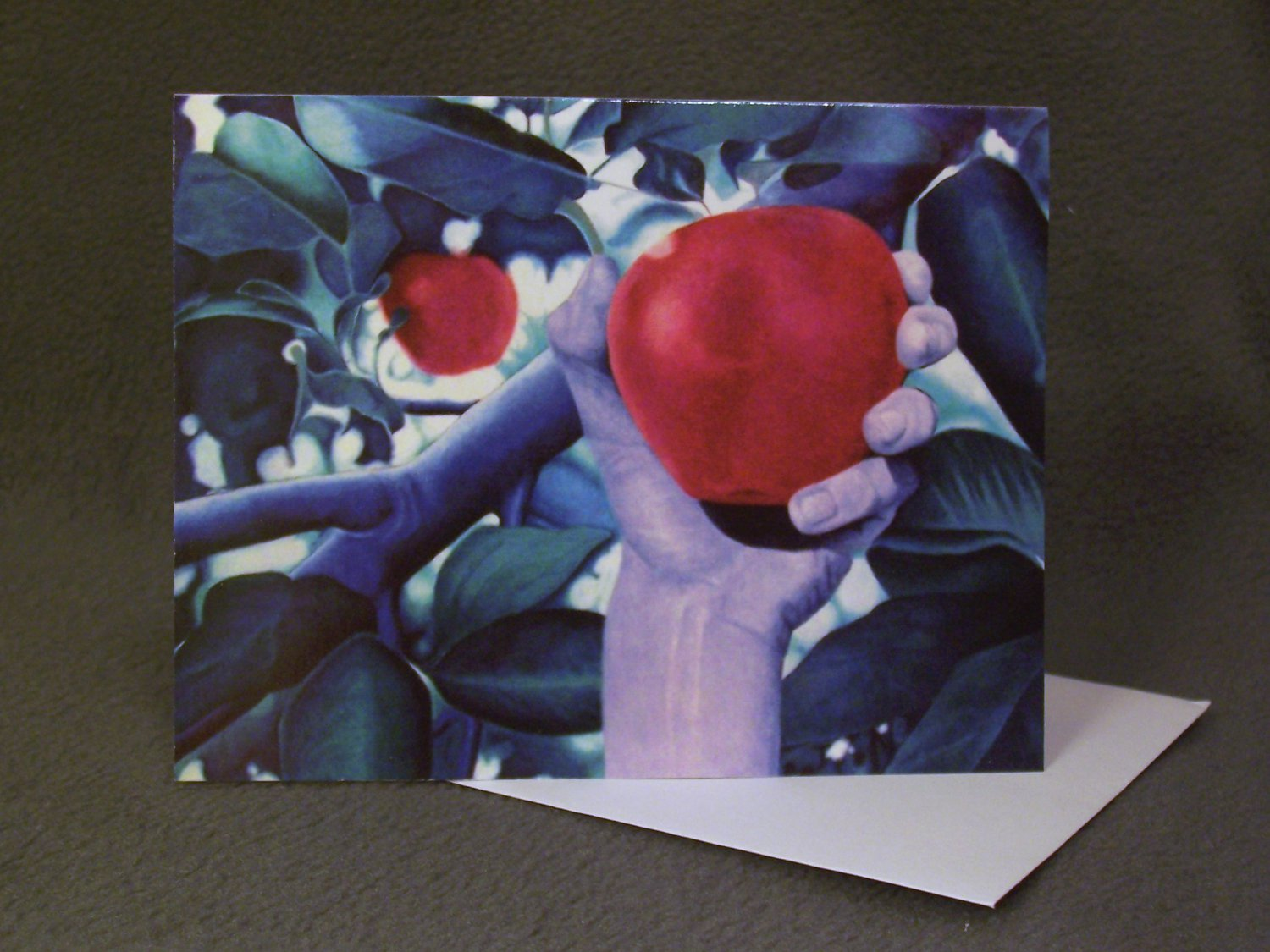 """4 Blank Greeting Cards Notecards- """"William""""- Colored Pencil Artwork"""