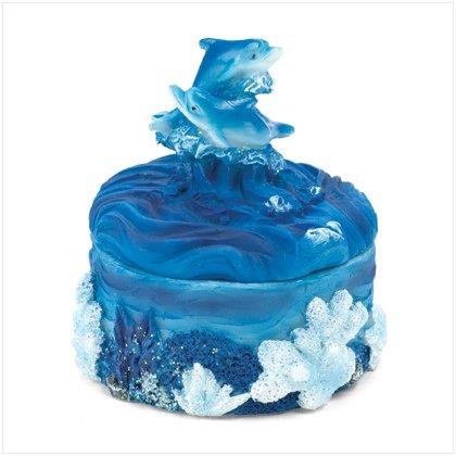 Dolphins Snowglobe & Trinket Box