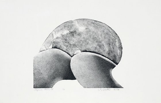 Organic Form 37, by Robert Porter (1924-1984)