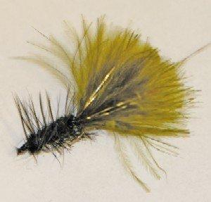 Black-Olive Bugger w/ Flash